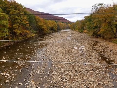 Drought-stricken Esopus Creek